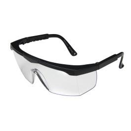 Óculos de Proteção de Ampla Visão   Seton 6bd9f29ff8