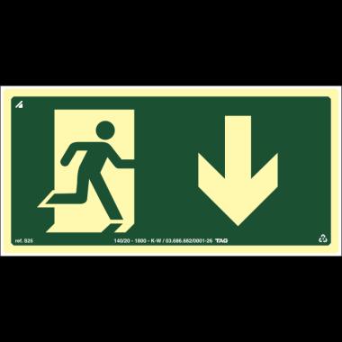 Placa fotoluminescente símbolo saída seta baixo